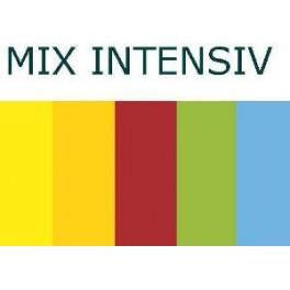 Papier A4 MAESTRO color 80 g/m2  MIX Intensiv 5x50ark.