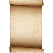 O.Papiernia CESAR - 190 g/m2 - 25 sztuk