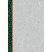 O.Papiernia STANDARD 2 - 110 g/m2 - 25 sztuk